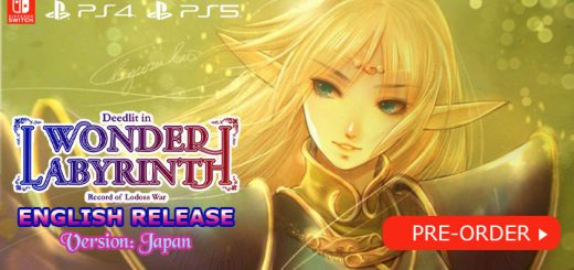 Record of Lodoss War: Deedlit in Wonder Labyrinth (English), Record of Lodoss War Deedlit in Wonder Labyrinth, Record of Lodoss War: Deedlit in Wonder Labyrinth, Playism, Nintendo Switch, Switch, release date, trailer, features, screenshots, pre-order now, Japan, English, WSS Playground, Team Ladybug, PS4, PS5, Physical Release