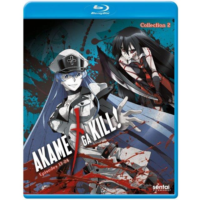 Akame Ga Kill!: Collection 2